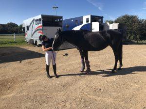 Retraining a Racehorse